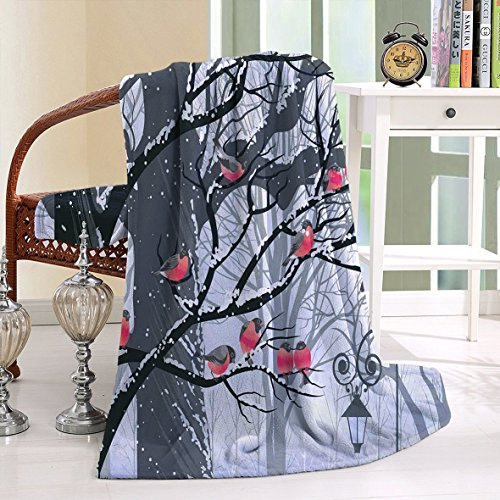 Cheap  HAIXIA Blanket Apartment Bullfinches on Trees in Winter City Park Snow Cold..