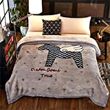 Raschel Blanket Thick Weighted Heavy Fleece Napping Throw Snuggle Reduce Anxiety Help Autism Bed Couch Cozy Warm Smooth Thanksgiving Wedding Christmas Birthday Gift,Queen,200×230cm 3.5kg