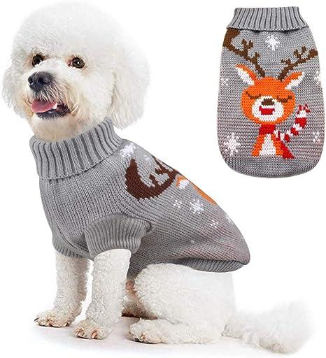 Idepet Disfraz de Gato Perro, Disfraz Gatuno Perro para Halloween ...