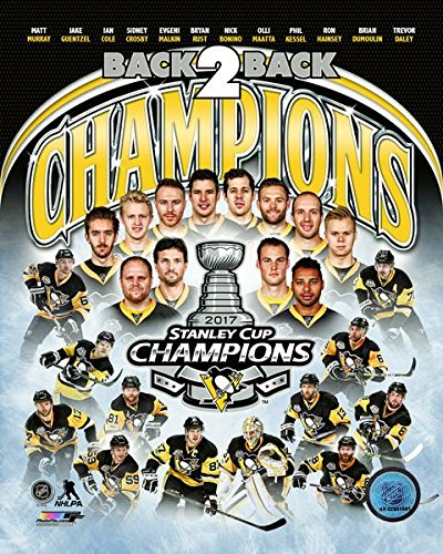 Pittsburgh Penguins 2017 Stanley Cup Champions Team Composite Photo (Size: 8