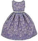 Little Girls Gorgeous Metallic Embroidered Jacquard Gown Flowers Girls Dresses