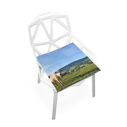 Amazon Com Plao Chair Pads Farm Animal Soft Seat Cushions Nonslip