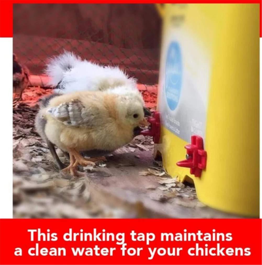 mamelons deau de volaille Abreuvoir automatique horizontal de vis de b/âti lat/éral pour la caille de canard de poulet Mamelon de robinet potable de poulet 10 pi/èces