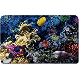 Memory Foam Bath Mat,Ocean,Colorful Coral Reef and Fishes Colony in Red Sea Egypt Africa Underwater Life ImagePlush Wanderlust Bathroom Decor Mat Rug Carpet with Anti-Slip Backing,Multicolor