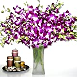Fresh Flowers - 20 Purple Dendrobium Orchids with Vase