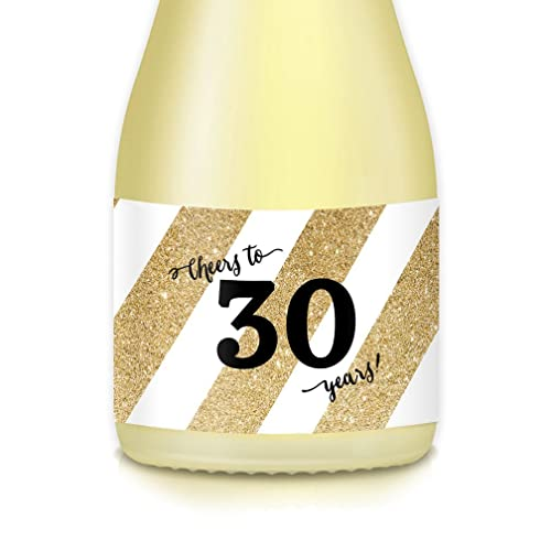 30th Birthday Or Thirtieth Wedding Anniversary Party Ideas Supplies Decorations Set Of 20 Gold Mini Champagne Wine Bottle Labels Woman Celebrating 30