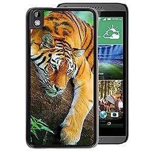 A-type Arte & diseño plástico duro Fundas Cover Cubre Hard Case Cover para HTC DESIRE 816 (Sleepy Cute Tiger Jungle Animal Tired)