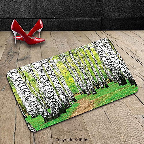 Custom Machine Washable Door Mat Decor Collection Pathway In Birch Grove Forest Early Fall Scene Print Yellowgreen Olive Peru Indoor Outdoor Doormat Mat Rug Carpet
