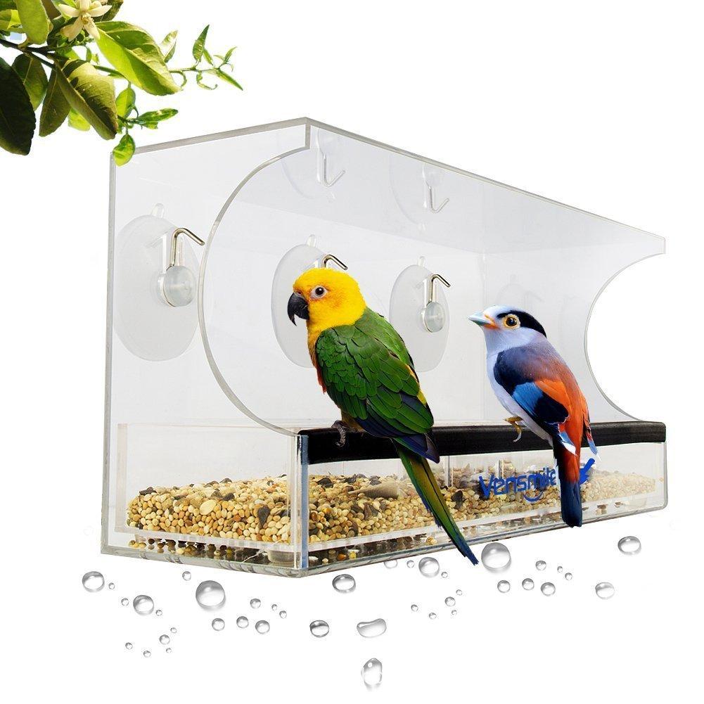 Mangiatoia Per Uccelli Con Finestra Grande Hangout Della Natura Casa E Cucina Caratteristiche Finestra Mangiatoia Per Uccelli Con Vassoio Rimovibile