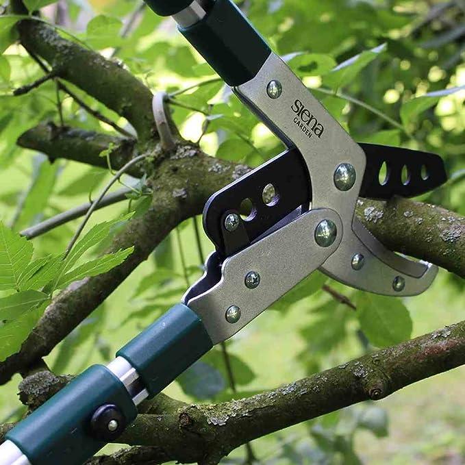 gr Siena Garden 358328 Alu Pro Amboss Astschere 68-102 cm 5-fach teleskopierbar