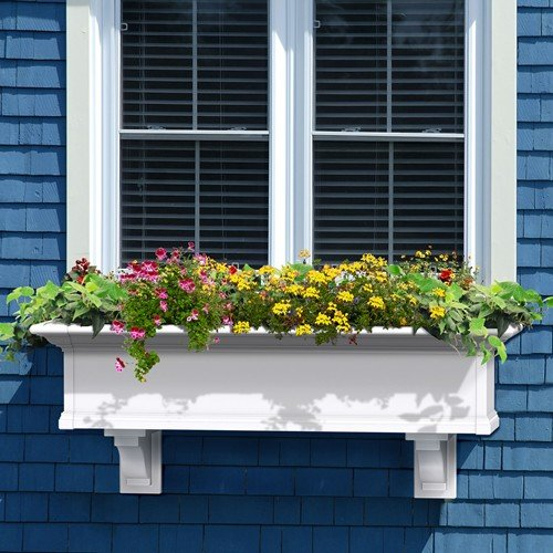 Mayne Yorkshire II 48'' Window Box Combo with Corbel Brackets White 4' by Home Wishes