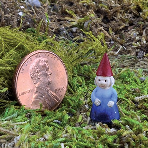 Miniature Fairy Garden Micro Mini Gnome Lady