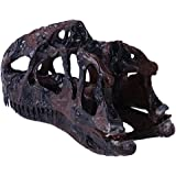 Dinosaur Monolophosaurus Skull Resin Fossil Model Collectibles Home Bar Decoration 3 Colors Pick - Brown