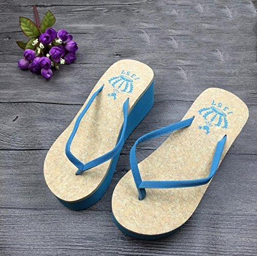 SUxian Creative Women Summer Flip-flops Bathroom Non-slip High Heel Flip-flops Beach Slippers Sandals (Color : Blue, Size : 39) Blue