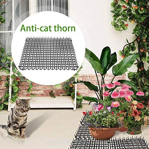 Flickering Calmson 5Pcs/Pack Eco-Friendly Anti-cat Thorns Pad, Cat, Dog Repelling Pad Gardening Plastic Mat Plastic Nails Security