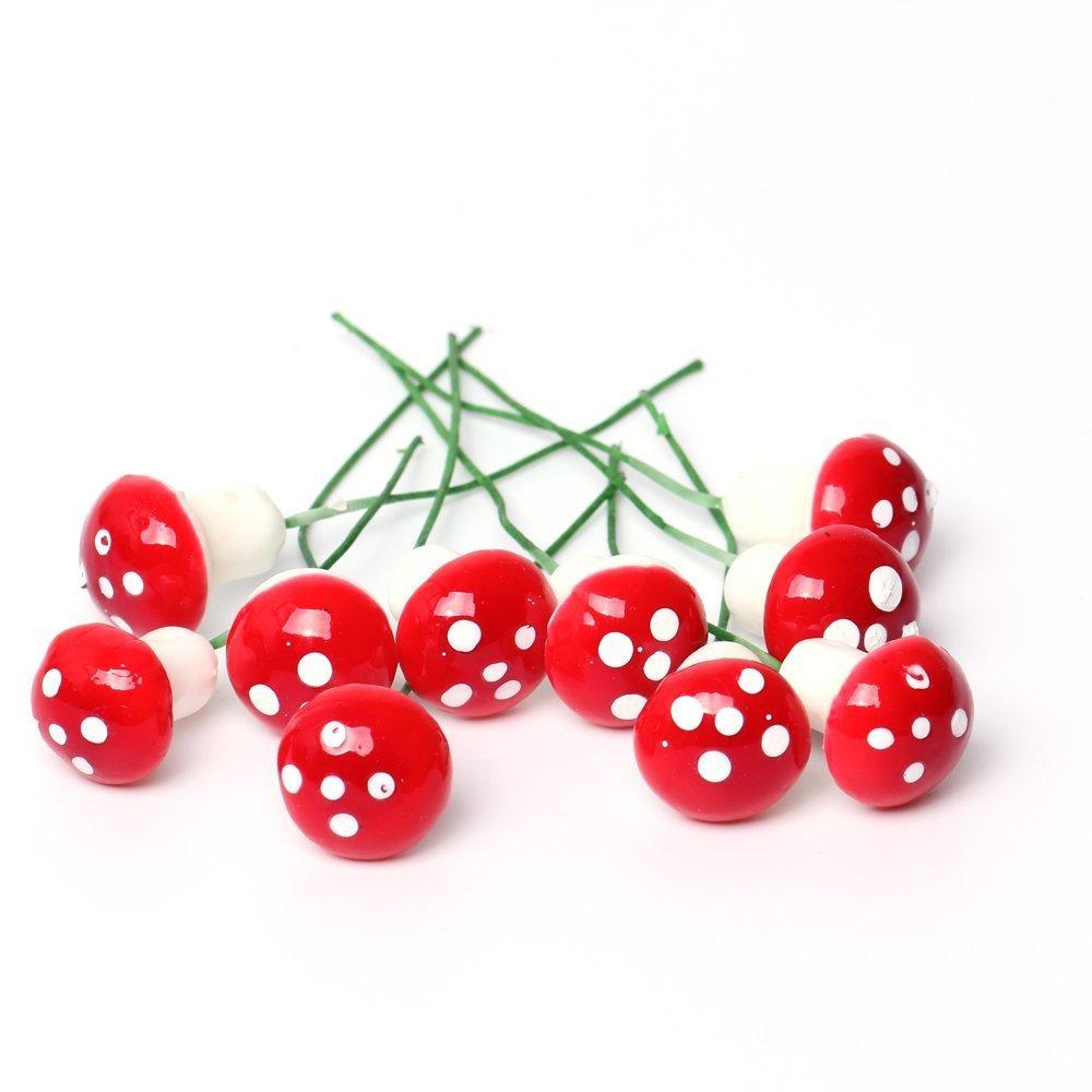 SecretRain Miniature Rouge Champignon en résine fée jardin décoratif pour Pot de fleurs-Lot de 10 Ltd UKPPLBDH922