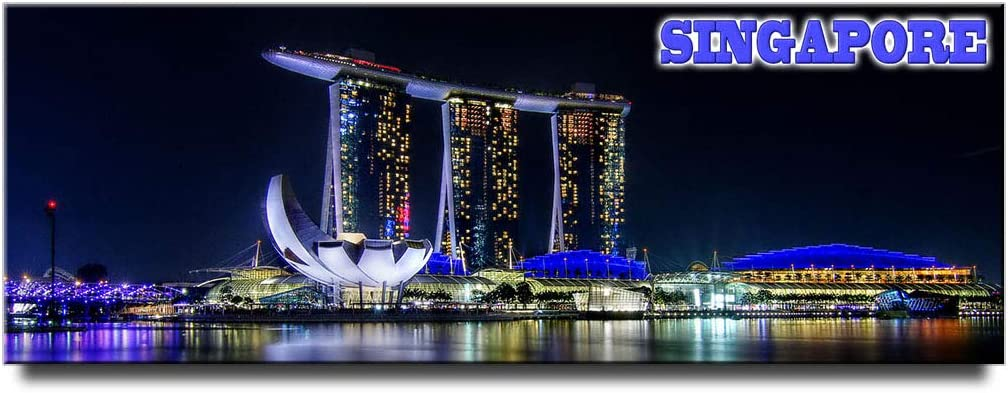 Marina Bay Sands panoramic fridge magnet Singapore travel souvenir