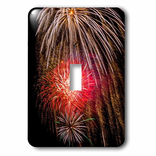 3dRose lsp_190716_1 Usa, Colorado, Frisco, Dillon Reservoir Fireworks Display, July 4Th Light Switch Cover