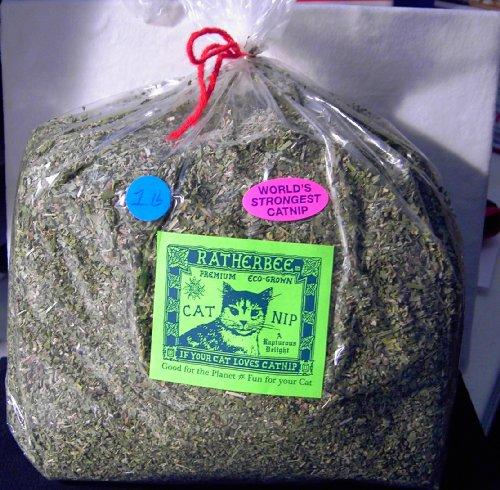 Ratherbee Premium Eco-Grown Catnip Loose Bulk 1 Pound Bag, My Pet Supplies