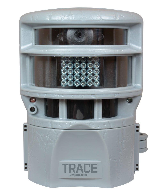 TRACE Surveillance