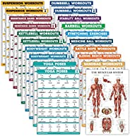 Palace Learning 20 Pack - Exercise Poster Set: Dumbbell, Suspension, Battle Rope, Stretching, Bodyweight, Barb