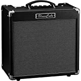 Roland Guitar Combo Amplifier (BC-HOT)
