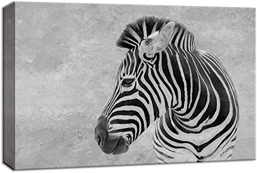 """12/""""x18/""""Animals Two Zebras HD Canvas prints Painting Home Decor Picture Wall art"""