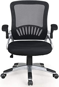 OWLN Office Ergonomic Mid-Back Mesh Chair Swivel Task Chair