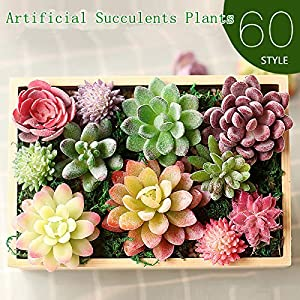 Walnut Artificial Succulents Decoration Desert Artificial Plant Landscape Fake Flower Arrangement Garden Home 13