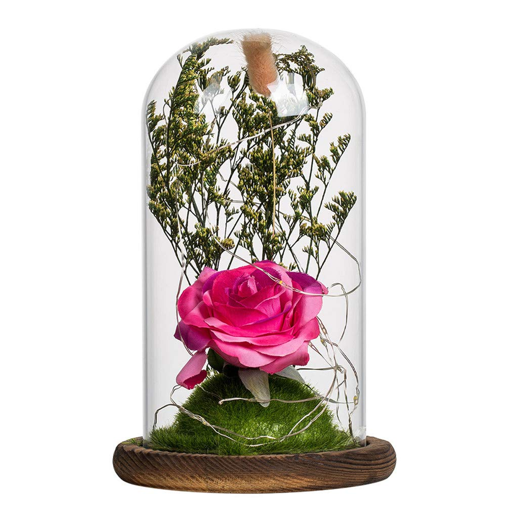 Ranoff Romantic Glass Rose Wedding Eternal Dried Flower Glass Decoration Home Bar Cafe Decoration Glass Artificial Flower Fake Red Flower Light Furnishing (Red) by Ranoff