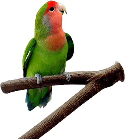 Wood Perch Paw Grinding Toy for Bird Parrot Budgies Parakeet Cockatiels Conure Lovebird Cage Stand Toy 18cm// 7