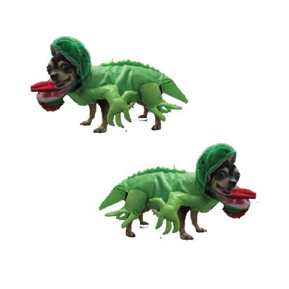 Iguana Costumes Dress Your Dogs Like Lizard Reptile