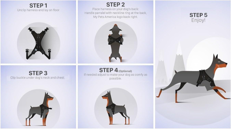 Motionjoy Nueva Suave C/ómoda Acolchada Ajustable Mascota Pecho del Arn/és del Chaleco para Mediano y Gran Tama/ño Perro Formaci/ón o Caminar Negro, XL
