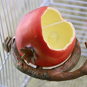 SAWEY ALIMENTADOR DE Pájaros Mejorado, Bandeja de alimentación Deslizante, Parrot Hámster Alimentador de Frutas