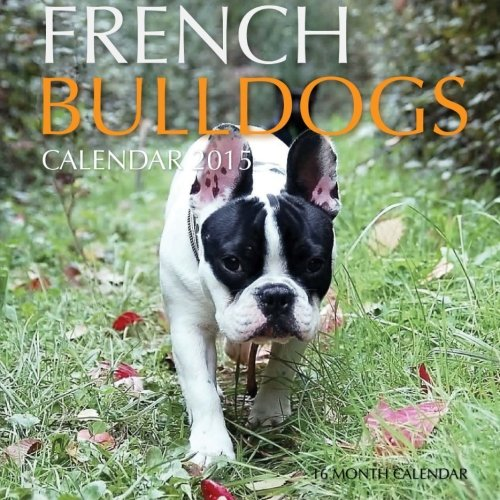 english bulldog 2015 calendar - 7