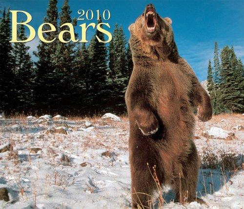 Bears 2010 (Bears 2010 Calendar)