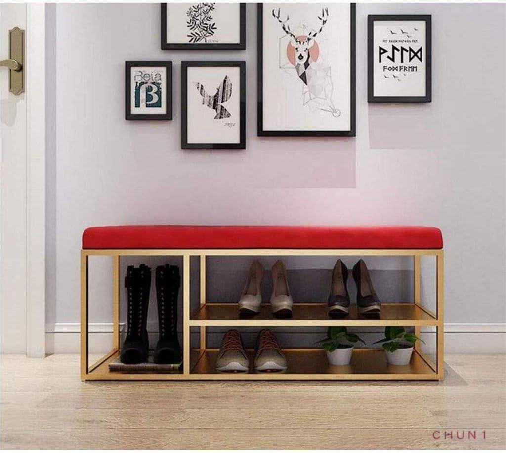 CHU N1 Doble Capa Estante de Zapatos, Botas de Hierro Forjado del Organizador del almacenaje y Pasillo de Banco de Gran Capacidad (Color : 3, Size : 60cm)