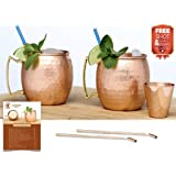Moscow Mule Copper Mugs Set of 2 - 15 Mule Recipes eBook - 100 % Solid Copper Cups Handmade Hammered - Non Nickel -UNIQUE Gift- 16 oz 2 Mugs PLUS A Shot Glass 2 Bent Copper Straws