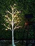 Image of Bolylight Birch Tree 4ft 48L LED Decorations Lighted Tree Valentine's Day Decor for Bedroom/Party/Office/Home, Warm White