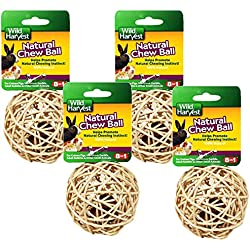Wild Harvest 4 Pack of Small Animals Natural Chew Balls