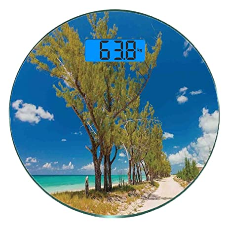 Escala digital de peso corporal de precisión Ronda playa Báscula ...
