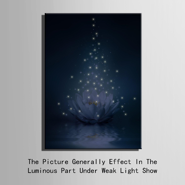 E-Home gedehnt LED LED LED Leinwand Drucke (Lotus) LED Wand Kunstdruck Blinkende Optische Faser Malerei LED Dekorationen, Canvas, 50x70cm1pc 2fd396