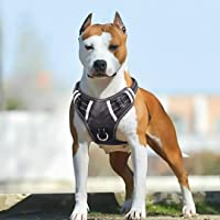 Deals on Babyltrl Big Dog Harness No Pull Adjustable Pet Reflective