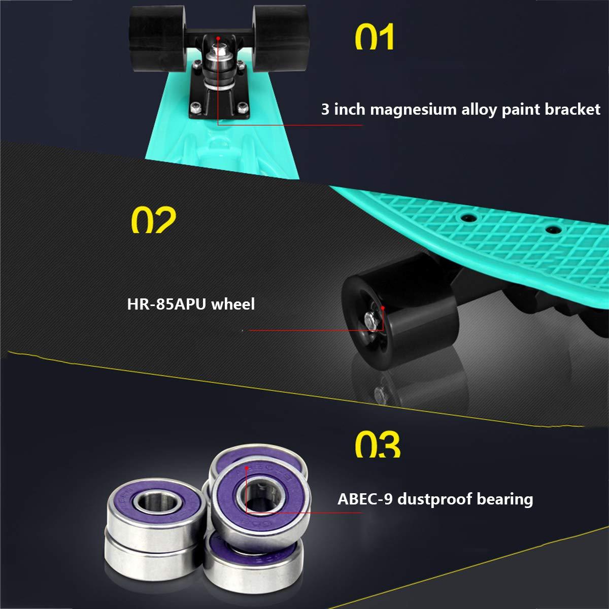 Amazon.com: Dapang - Tabla de monopatín de plástico para ...