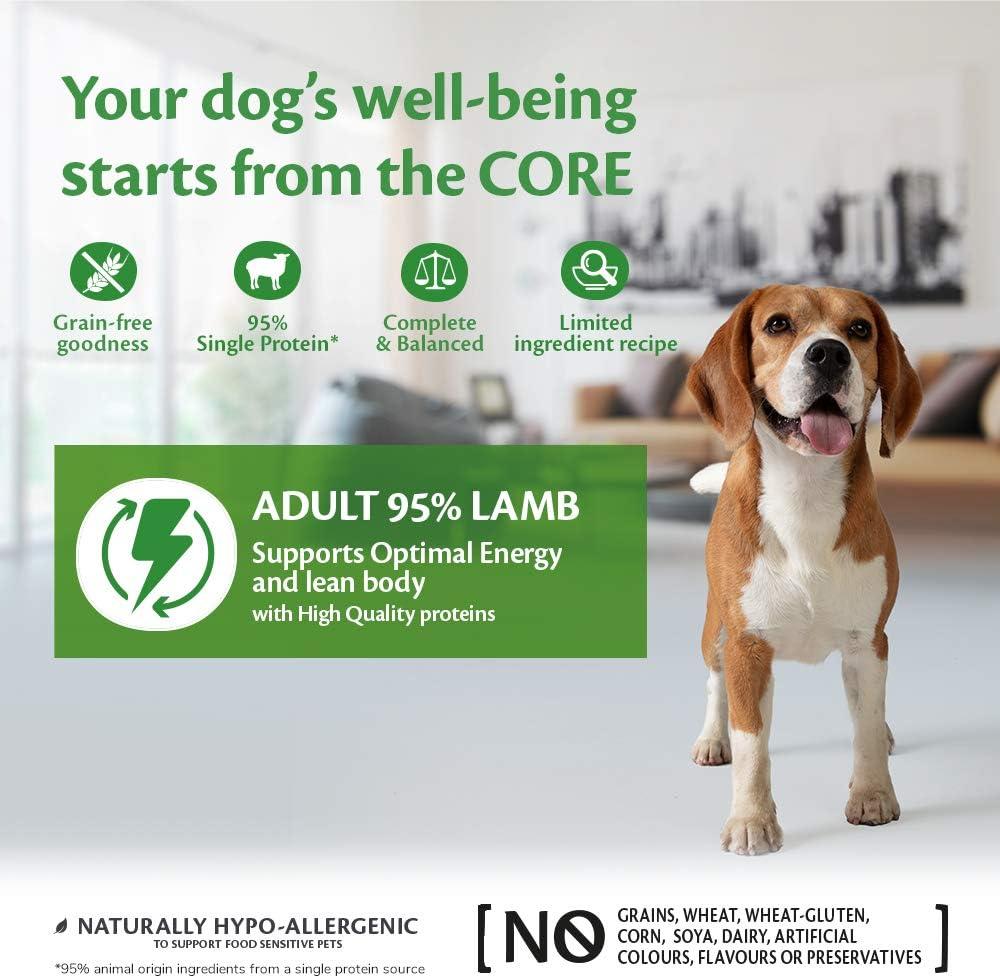 Wellness CORE 95% Grapa de Comida para Perro mojada y una Sola proteína de Cordero con Calabaza, 400 g, Paquete de 6
