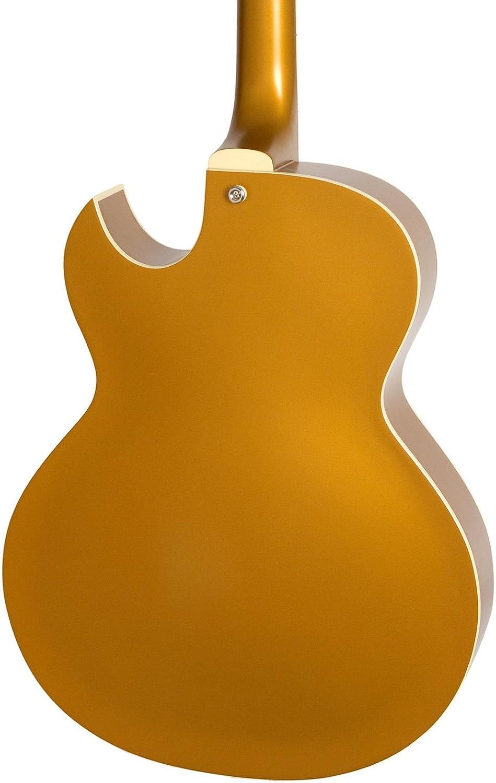 Epiphone Limited Edition es-295 Guitarra Eléctrica Cuerpo Hueco de Color Dorado Metálico: Amazon.es: Instrumentos musicales
