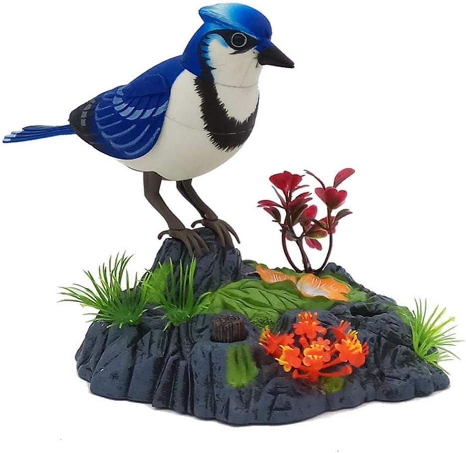 sprechend Vogel mit Bewegungssensor 14cm x 16cm plastik elektrische Haustiere Sprechender Papagei blau Aussprache wiederholt Papagei singt und umrei/ßt Sittiche Aktivierung elektronisch