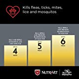Nutri-Vet Defense Flea & Tick Control for Puppies