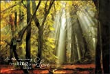 In the Morning I Will Sing of Your Love Yellow Leaves 24 x 36 Wood Wall Art Sign Plaque