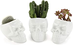 T4U White Ceramic Skull Shaped Succulent Planter Pots Set of 3, Cute Cactus Plant Pot Creative Pen Pencil Holder for Home Office Desk Decoration Birthday Wedding Christmas Gift